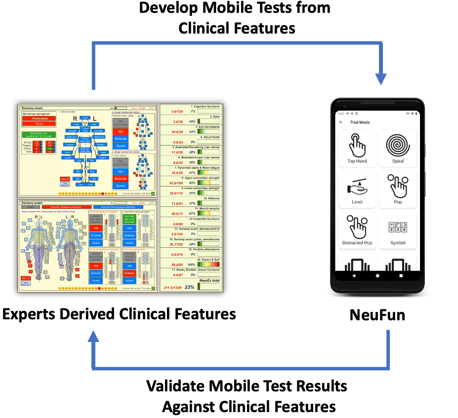 A diagram showing that NeuFun was developed from neurological exam components and validated against them.